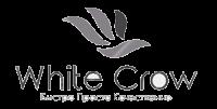 Web-Studio White Crow